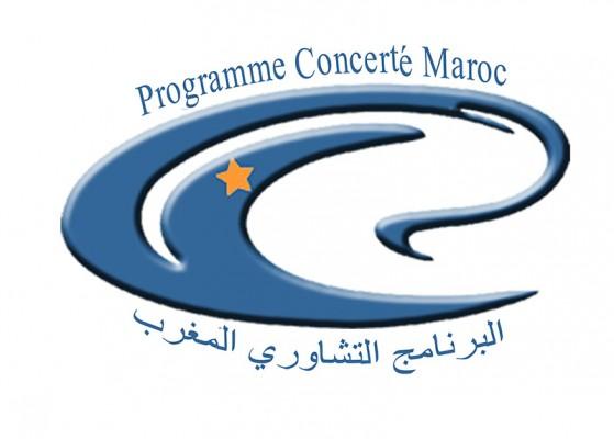 البرنامج التشاوري المغرب: توظيف مكلف بمهمة: استشارات الشباب. آخر أجل هو 10 فبراير 2013